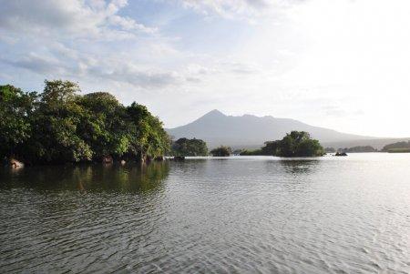 Experiencia en Jicaro Island